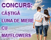 concurs-mayflowers